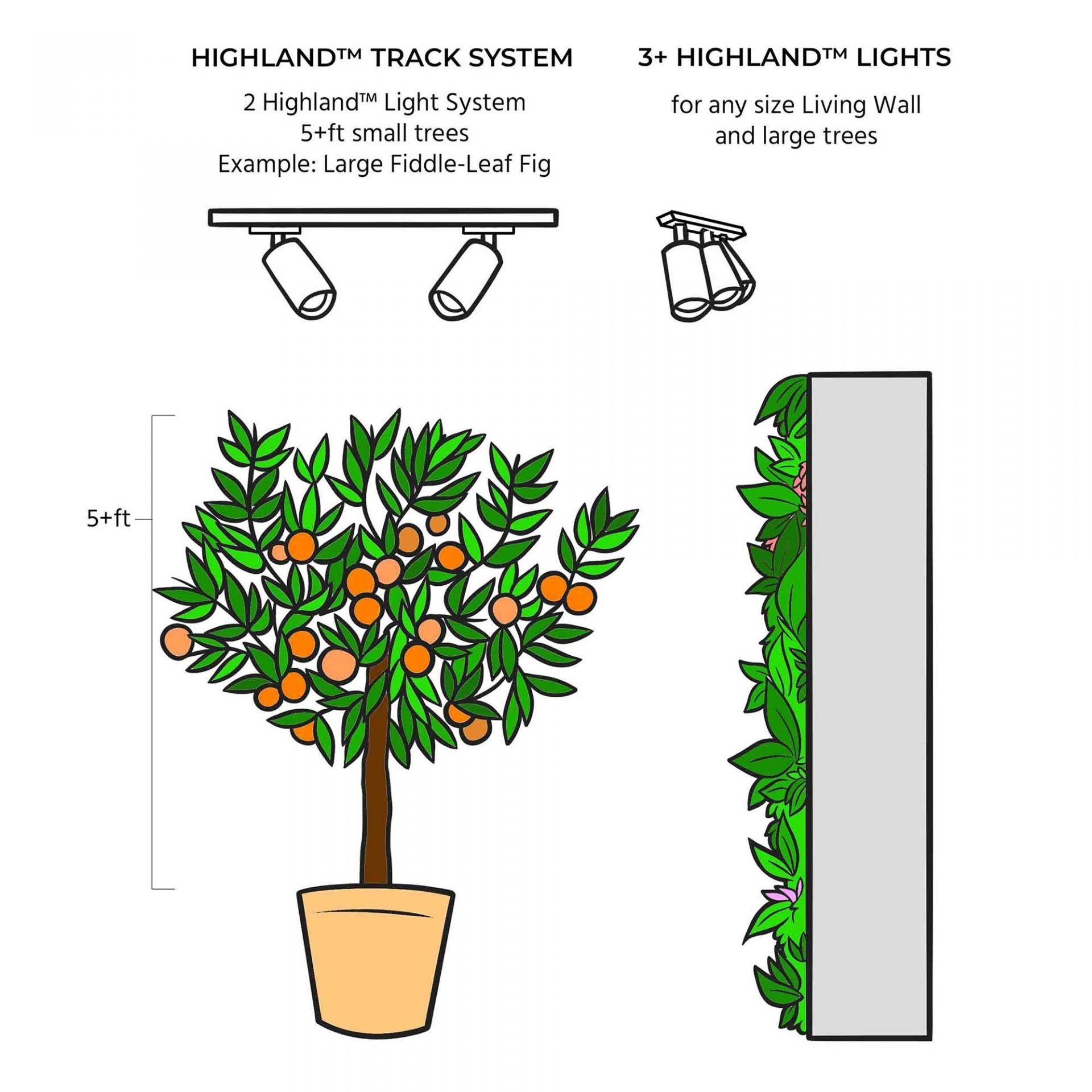Highland Growing Guide Infographic
